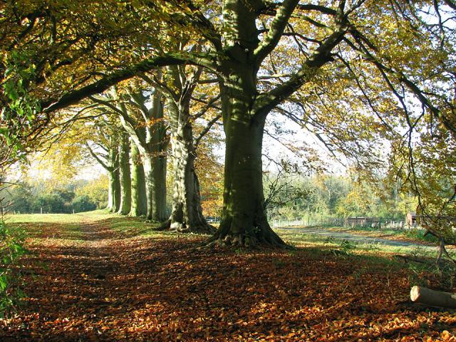 Keswick Autumn