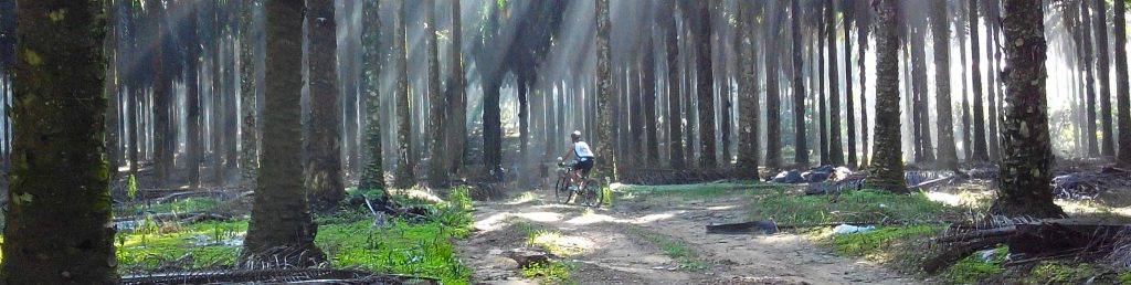 best cycling routes north yorkshire